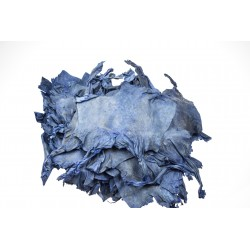 Skóra żaby niebieska