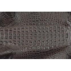 Skóra z grzbietu krokodyla brąz 26cm