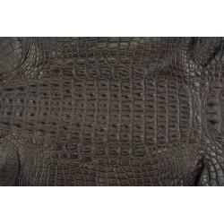 Skóra z grzbietu krokodyla brąz 31cm