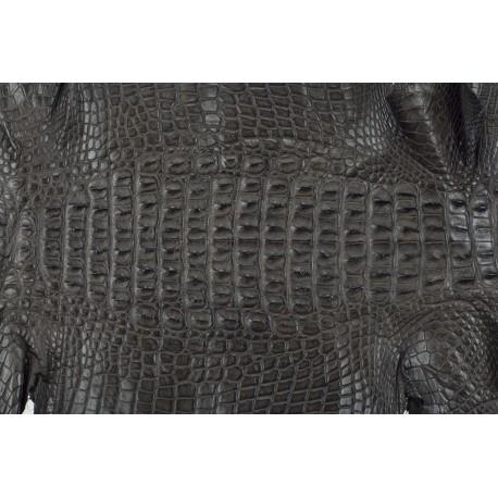 Skóra z grzbietu krokodyla brąz 22cm