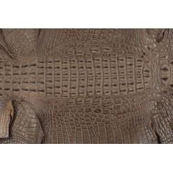 Skóra z grzbietu krokodyla jasny brąz 29cm