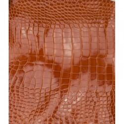 Skóra brzucha aligatora texas orange 36cm