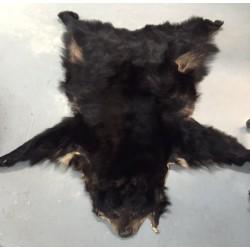 Futro niedźwiedzia